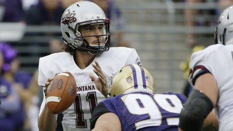 Montana quarterback Reese Phillips (11) is pressured by Washington defensive lineman Greg Gaines (99) in the first half of an NCAA college football game, Saturday, Sept. 9, 2017, in Seattle. (AP Photo/Ted S. Warren)