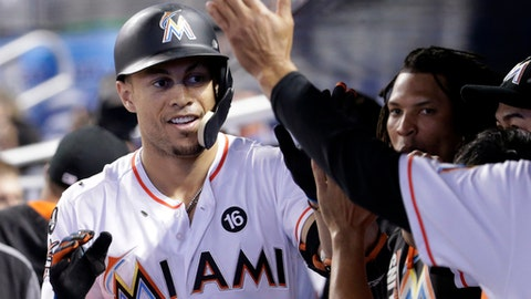 Miami Marlins' Giancarlo Stanton is congratulated in the dugout after hitting a two-run home run in the eighth inning of a baseball game against the New York Mets, Wednesday, Sept. 20, 2017, in Miami. The Marlins won 9-2. (AP Photo/Lynne Sladky)
