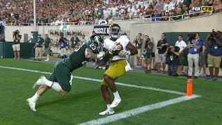 Notre Dame's Dexter Williams pulls down amazing touchdown catch