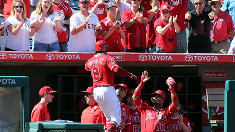 Los Angeles Angels fans and teammates celebrate Eric Young Jr.'s three-RBI home run against the Seattle Mariners in the seventh inning of a baseball game in Anaheim, Calif., Sunday, Oct. 1, 2017. (AP Photo/Reed Saxon)