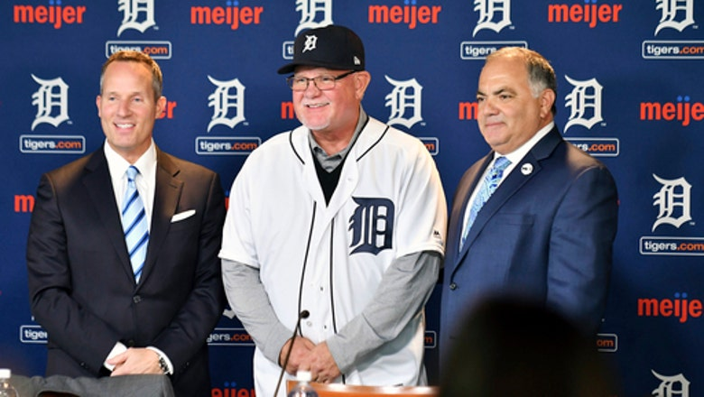 Tigers could be under the radar for a while during rebuild