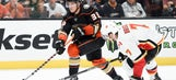 Ducks look to rebound from loss as home stretch continues