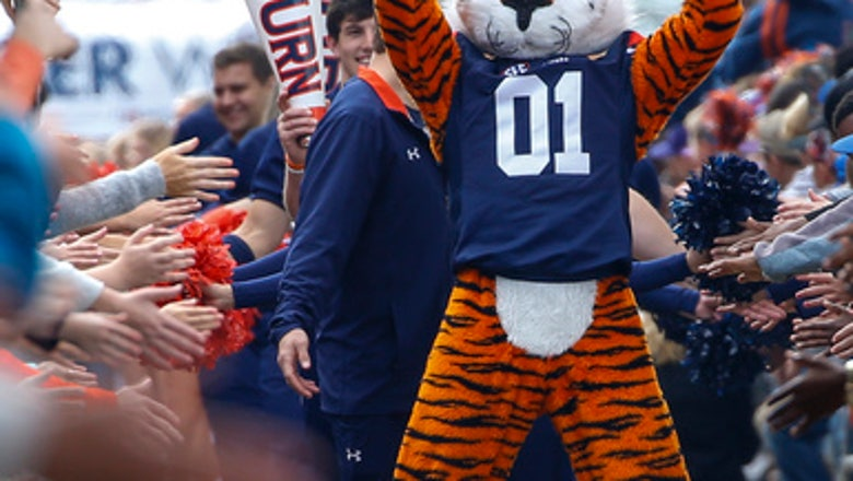 """Auburn's Johnson: Iron Bowl /""""should be one for the ages/"""""""