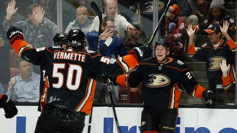 Anaheim Ducks right wing Ondrej Kase, right, of Czech Republic, celebrates his goal with center Antoine Vermette (50) during the second period of an NHL hockey game against the Ottawa Senators in Anaheim, Calif., Wednesday, Dec. 6, 2017. (AP Photo/Alex Gallardo)