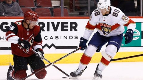 Arizona Coyotes left wing Max Domi (16) tries to keep the puck away from Florida Panthers left wing Jamie McGinn (88) during the first period of an NHL hockey game, Tuesday, Dec. 19, 2017, in Glendale, Ariz. (AP Photo/Ross D. Franklin)