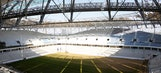 Russia warns of locusts destroying World Cup fields