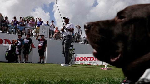 Honda Classic forecast for Thursday