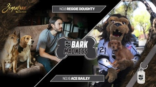 LA Kings Live: Bark Madness, Round 2