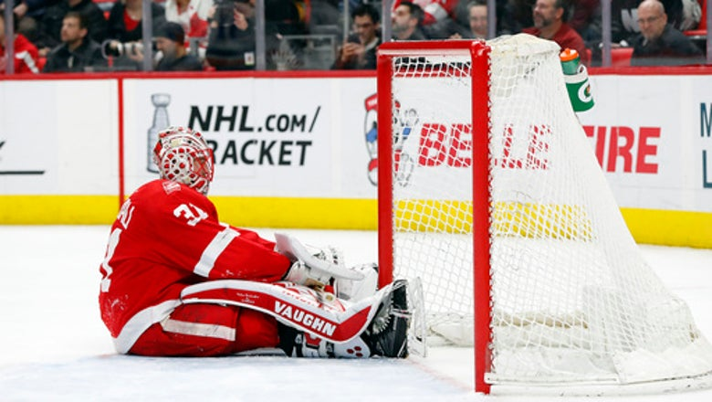 Red Wings fall short of low expectations in new arena