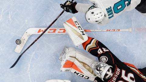 San Jose Sharks left wing Evander Kane, top, scores past Anaheim Ducks goaltender John Gibson during the second period of Game 1 of an NHL hockey first-round playoff series in Anaheim, Calif., Thursday, April 12, 2018. (AP Photo/Reed Saxon)