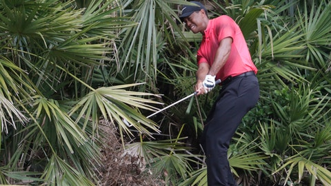 Tiger Woods hits from the rough off the second hole fairway, during the final round of the Players Championship golf tournament, Sunday, May 13, 2018, in Ponte Vedra Beach, Fla. (AP Photo/Lynne Sladky)
