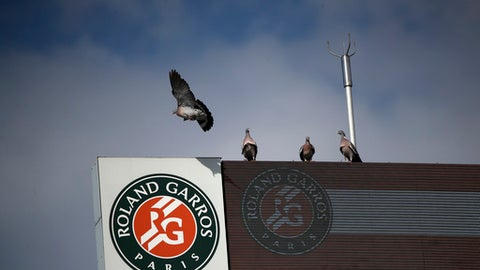 A pigeon flies over center court where Latvia's Jelena Ostapenko plays Ukraine's Kateryna Kozlova during their first round match of French Open tennis tournament at the Roland Garros Stadium, Sunday, May 27, 2018 in Paris. (AP Photo/Christophe Ena)