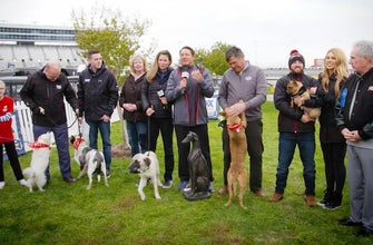 Nationwide Insurance takes part in the 'Chase for the Pup' dog show at Texas Motor Speedway