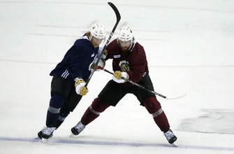 Neal provides goals, leadership and experience for Vegas