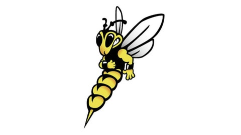 27. UW-Superior Yellowjackets