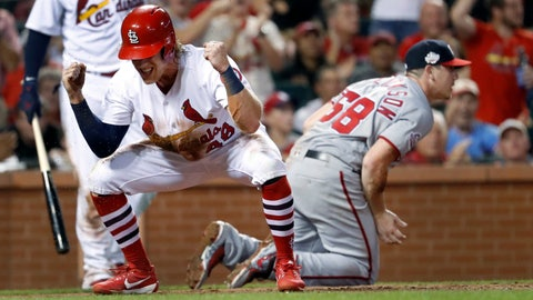 <p>               St. Louis Cardinals' Harrison Bader, left, celebrates on a wild pitch by Washington Nationals starting pitcher Jeremy Hellickson (58) during the fifth inning of a baseball game Wednesday, Aug. 15, 2018, in St. Louis. Hellickson was injured on the play and left the game. (AP Photo/Jeff Roberson)             </p>