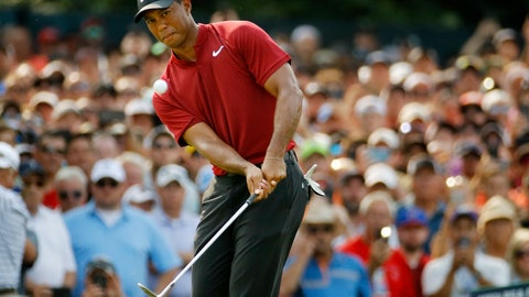 <p>               Tiger Woods chips onto 14th green during the final round of the PGA Championship golf tournament at Bellerive Country Club, Sunday, Aug. 12, 2018, in St. Louis. (AP Photo/Charlie Riedel)             </p>