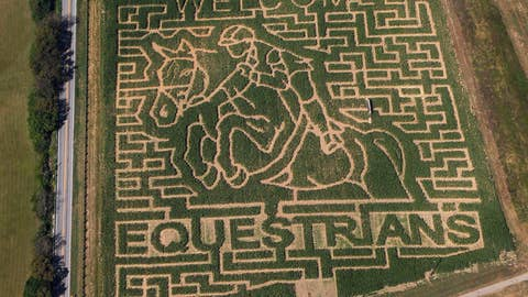 <p>               In this aerial photo taken on Sept. 21, 2010, a giant corn field maze at the Kelley Farms welcomes the riders for the World Equestrian Games, in Lexington, Ky. It's referred to as the Super Bowl of equestrian competition. The World Equestrian Games are scheduled to kick off Wednesday, Sept 12, 2018 at the Tryon International Equestrian Center in Mill Spring, North Carolina, two hours west of Charlotte. They run through Sept. 23. The games feature more than 600 equestrians from 71 countries and six continents competing in eight different disciplines. The event is expected to attract more than 500,000 people. (Charles Bertram/The Lexington Herald-Leader via AP)             </p>