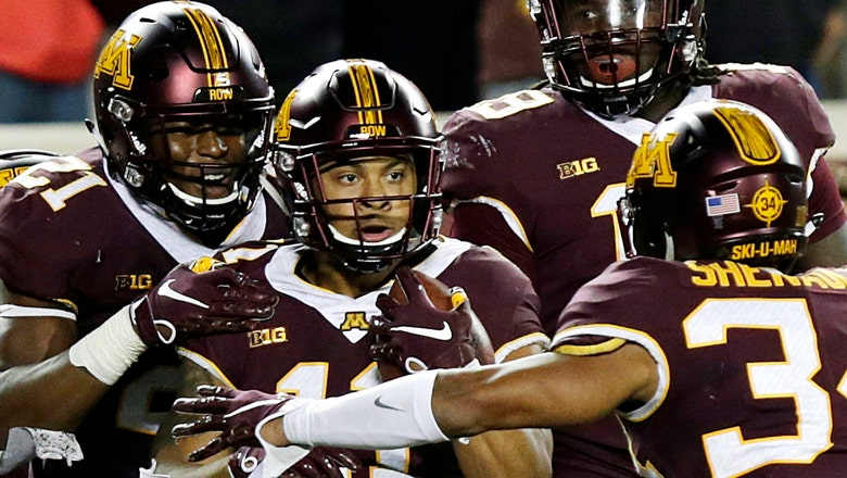 Minnesota safety Winfield out for season with foot injury
