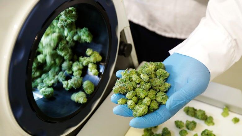 Marijuana legalization in Canada won't change NHL _ yet