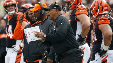 <p>               Cincinnati Bengals head coach Marvin Lewis, center, reacts on the sideline in the first half of an NFL football game against the Cleveland Browns, Sunday, Nov. 25, 2018, in Cincinnati. (AP Photo/Frank Victores)             </p>