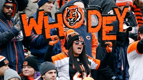 <p>               FILE - In this Dec. 10, 2017, file photo, Cincinnati Bengals fans cheer in the stands during the first half of an NFL football game against the Chicago Bears in Cincinnati. Here comes Who Dey vs. Who Dat. Say what? The Who Dat folks from New Orleans go head-on with the Who Dey fans in Cincinnati on Sunday. And don't ask which group first came up with its catchy phrase and odd rendering of the English language.  (AP Photo/Frank Victores, File)             </p>