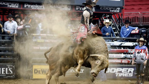 <p>               FILE - In this Feb. 11, 2017 file photo, Mason Lowe rides Cochise during a Professional Bull Riders event at the Sprint Center in Kansas City, Mo. Lowe died Tuesday, Jan. 15, 2019, after a bull stomped on his chest during a PBR chute-out competition at the National Western Stock Show in Denver. (AP Photo/Colin E. Braley, File)             </p>
