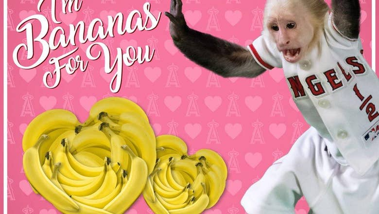 Happy Valentine's Day from your favorite SoCal sports teams (and TV network)