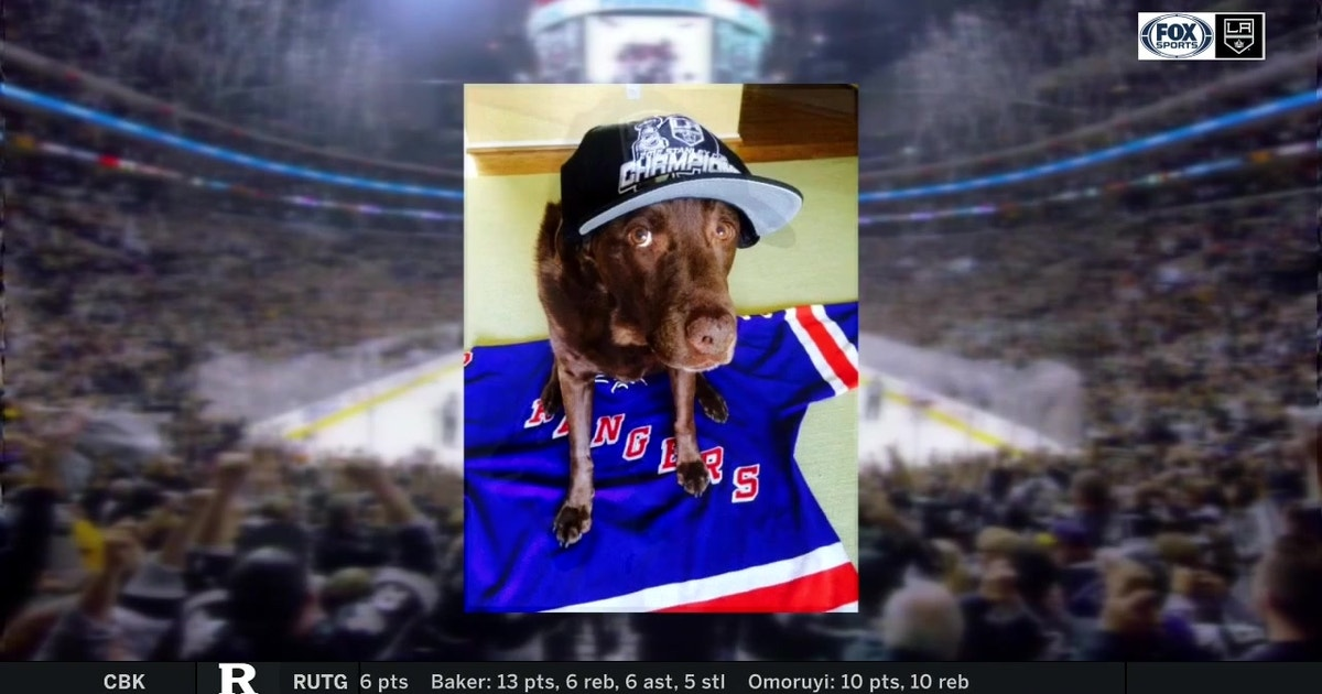 0c795eda034 Michael Vartan and his dog's love of the LA Kings runs deep | FOX Sports