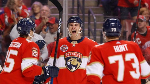 <p>               Florida Panthers defenseman Josh Brown center, celebrates his first NHL goal with left wing Dryden Hunt (73) and center Henrik Borgstrom (95) during the first period of an NHL hockey game against the Detroit Red Wings, Sunday, March 10, 2019 in Sunrise, Fla. (AP Photo/Wilfredo Lee)             </p>