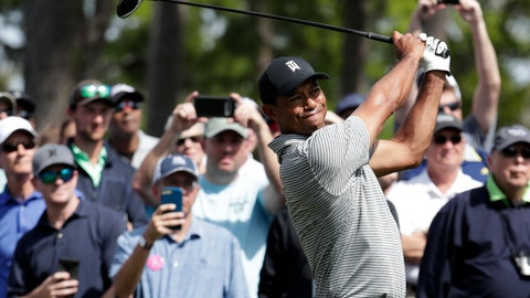 <p>               Tiger Woods hits from the seventh tee during a practice round at The Players Championship golf tournament, Wednesday, March 13, 2019, in Ponte Vedra Beach, Fla. (AP Photo/Lynne Sladky)             </p>