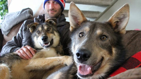 <p>               This Wednesday, March 20, 2019, photo shows Iditarod musher Nicolas Petit posing with two of his dogs in Anchorage, Alaska. The Frenchman Petit was in the lead of this year's race but his dog team quit running after he yelled at Joey, right, to stop picking on Danny, left. Petit says that isn't the reason the dogs quit running; instead, they quit about the same point the team got lost in a blizzard in the 2018 race. (AP Photo/Mark Thiessen)             </p>