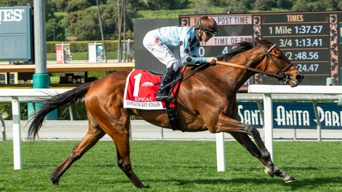 <p>               In a photo provided by Benoit Photo, Epical and jockey Tyler Baze win the Grade II, $200,000 San Luis Stakes horse race Friday, March 29, 2019, at Santa Anita in Arcadia, Calif. (Benoit Photo via AP)             </p>