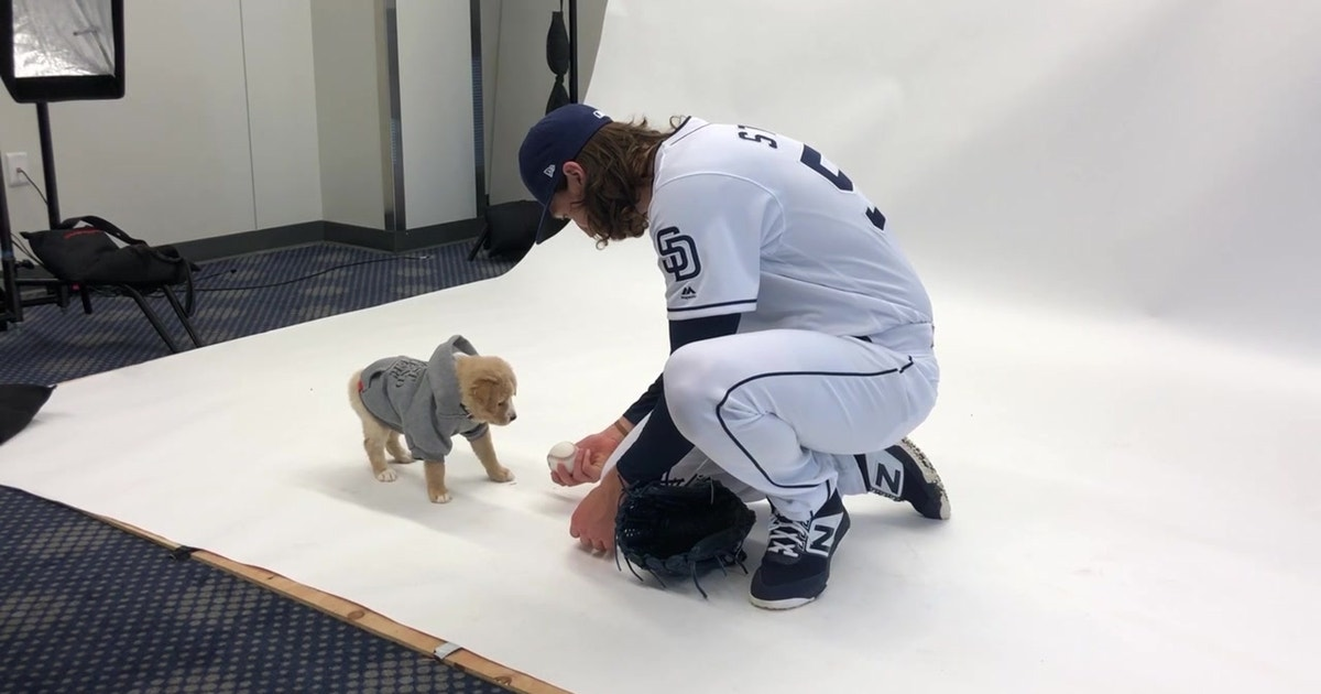 BTS at the Padres puppy calendar shoot
