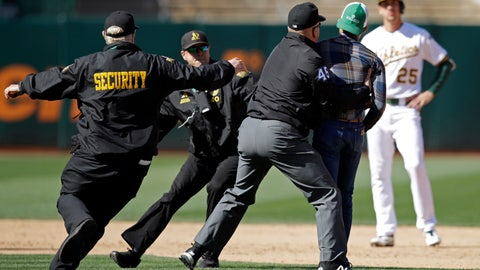 <p>               Second base umpire Jeff Nelson (45) grabs a fan that ran onto the field as security guards assist and Oakland Athletics' Stephen Piscotty, right, watches in the ninth inning of a baseball game against the Toronto Blue Jays, Saturday, April 20, 2019, in Oakland, Calif. (AP Photo/Ben Margot)             </p>