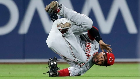 <p>               Cincinnati Reds left fielder Matt Kemp falls after making the catch for the out on San Diego Padres' Franmil Reyes during the fifth inning of a baseball game Thursday, April 18, 2019, in San Diego. (AP Photo/Gregory Bull)             </p>