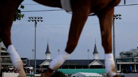 <p>               A horse is ridden to the track for a workout at Churchill Downs, Wednesday, May 1, 2019, in Louisville, Ky. (AP Photo/Charlie Riedel, File)             </p>