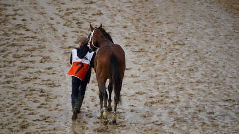 <p>               Maximum Security is walked off the track after being disqualified for the 145th running of the Kentucky Derby horse race at Churchill Downs Saturday, May 4, 2019, in Louisville, Ky. (AP Photo/Charlie Riedel)             </p>
