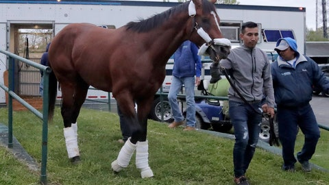 <p>               Maximum Security, the horse disqualified from the Kentucky Derby horse race, is led off a trailer by Edelberto Rivas upon the horse's arrival at Monmouth Park Racetrack, Tuesday, May 7, 2019, in Oceanport, N.J. The Kentucky Horse Racing Commission denied the appeal of Maximum Security's disqualification as Kentucky Derby winner for interference, saying the stewards' decision is not subject to appeal. Racing stewards disqualified Maximum Security to 17th place on Saturday and elevated Country House to first after an objection filed by two jockeys. Stewards determined he impeded the paths of several horses in the race. Owner Gary West confirmed that Maximum Security won't run in the upcoming Preakness, saying there's no need without a chance to compete for the Triple Crown. (AP Photo/Julio Cortez)             </p>