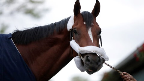 <p>               Maximum Security, the horse disqualified from the Kentucky Derby horse race, looks on after arriving at its home barn at Monmouth Park Racetrack, Tuesday, May 7, 2019, in Oceanport, N.J. The Kentucky Horse Racing Commission denied the appeal of Maximum Security's disqualification as Kentucky Derby winner for interference, saying the stewards' decision is not subject to appeal. Racing stewards disqualified Maximum Security to 17th place on Saturday and elevated Country House to first after an objection filed by two jockeys. Stewards determined he impeded the paths of several horses in the race. Owner Gary West confirmed that Maximum Security won't run in the upcoming Preakness, saying there's no need without a chance to compete for the Triple Crown. (AP Photo/Julio Cortez)             </p>