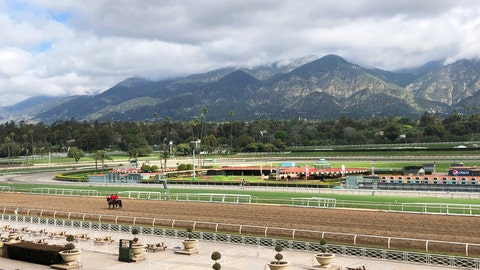 <p>               FILE - In this Thursday, March 28, 2019, file photo, a few horses and riders are seen on the track while members of the California Horse Racing Board weigh new safety and medication rules in the wake of 22 horse deaths at Santa Anita Park, during a meeting at the track in Arcadia, Calif. The Stronach Group are the owners of Santa Anita Park that was the site of 23 horse deaths over a span of three months. (AP Photo/Amanda Lee Myers, File)             </p>
