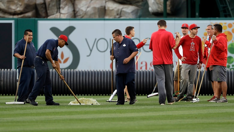 Twins, Angels postponed, will be made up on Thursday