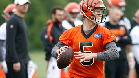 <p>               Cincinnati Bengals quarterback Ryan Finley drops back to pass during NFL football rookie minicamp Friday, May 10, 2019, in Cincinnati. (AP Photo/Gary Landers)             </p>