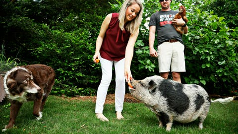 <p>               In this April 25, 2019 photo, a pig named Hamilton resides in Raleigh, N.C., with Kyle Eckenrode, right, and fiancee Karoline Briggs; Australian shepherd Zé and eight chickens. The Carolina Hurricanes have not lost at home in the playoffs this year since Hamilton the pig became something of an unofficial mascot. (Juli Leonard/The News & Observer via AP)             </p>