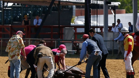 <p>               Jockey Trevor McCarthy, right, looks on as track officials tend to his ride Congrats Gal after the horse collapsed after the eighth horse race at Pimlico Race Course, Friday, May 17, 2019, in Baltimore. (AP Photo/Lauren Helber)             </p>