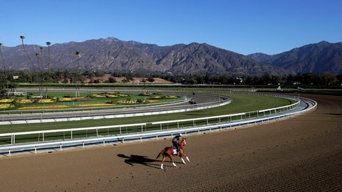 <p>               FILE - In this Oct. 30, 2013, file photo, an exercise rider takes a horse for a workout at Santa Anita Park with palm trees and the San Gabriel Mountains as a backdrop in Arcadia, Calif. A second horse in two days and 29th overall died at Santa Anita, Sunday, June 9, 2019, where management has chosen to continue racing for the rest of the current meet. (AP Photo/Jae C. Hong, File)             </p>