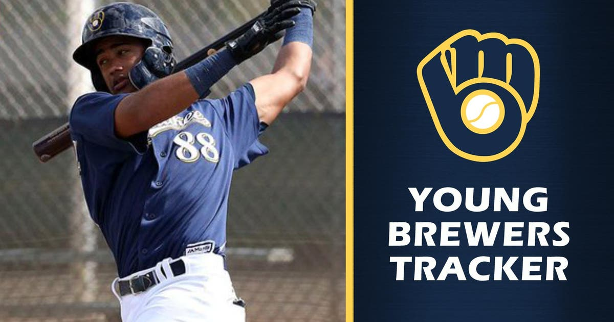 17-year-old Brewers prospect Fernandez mashes way to milestone