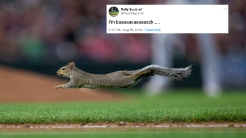 Twins rally squirrel