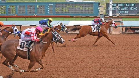 <p>               This Aug. 18, 2019, photo provided by Ruidoso Downs shows horses racing during trials at Ruidoso Downs, New Mexico.  A horse owner and a trainer from Texas say officials in New Mexico are failing to follow their own policies and regulations in overseeing the state's multimillion-dollar racing industry. They're suing in U.S. District Court, alleging their rights to due process were violated when the executive director of the New Mexico Racing Commission allowed horses belonging to a trainer suspended for suspicion of illegal drugging to compete under other trainers. (Jake Rogers/Ruidoso Downs via AP)             </p>