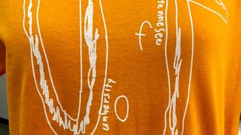 <p>               This photo shows a University of Tennessee shirt using the design of a fourth-grader who was bullied, Thursday, Sept. 12, 2019 in Knoxville, Tenn. A Florida fourth-grader who was bullied over his homemade University of Tennessee shirt has been offered a four-year scholarship to the school. School officials said Thursday the boy's scholarship would cover tuition and fees beginning in the fall of 2028 if he chooses to attend the University of Tennessee and meets admission requirements. (AP Photo/Steve Megargee)             </p>
